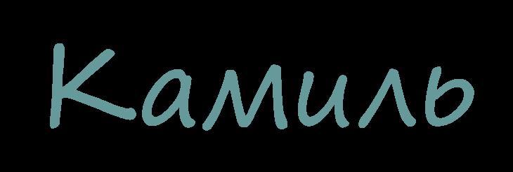 Значение имени Камиль
